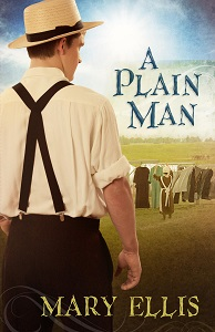 A Plain Man by Mary Ellis