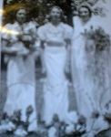 Donna F. Crow 3 brides 2