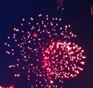 Gail Pallotta Fireworks